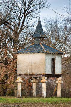 Pigeonnier à Lampaut, Lieu-dit Roquefort (Tarn, 81)