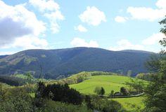 Entre Château Chinon et Luzy, les paysages s'ouvrent et les monts du Morvan se dévoilent, belle balade au fil des saisons .... #Morvan #Bourgogne # France