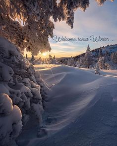 """Francy Ugolini's Instagram photo: """"** Welcome, sweet Winter ! ** . . . #moodoftheday #winter #winteriscoming #Christmas #Christmasseason #snow"""" Landscape Photography Tips, Winter Photography, Nature Photography, Travel Photography, Photography Basics, Photography Contests, Flash Photography, Photography Backdrops, Professional Photography"""