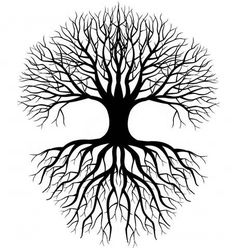 Simple Tree Roots Coloring Coloring Pages More