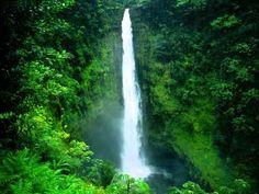 ムービー  Akaka Falls