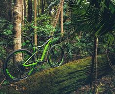 A Cannondale Scalpel Si Hi-Mod Team in its natural habitat. Looking lush and nimble rolling on Mtb, Bicycles, Mountain Biking, Habitats, Lush, Flow, Cycling, Natural, Instagram Posts