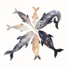 Whale Pod, archival print of the artist, Michelle's, original watercolor painting Whale Song, Illustration Art, Illustrations, Wale, Art Textile, Fish Art, Watercolor Paintings, Whales, Pisces