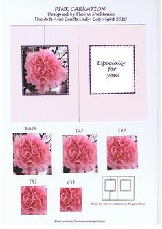 PINK CARNATION ESPECIALLY FOR YOU Friend female relative on Craftsuprint - Add To Basket!