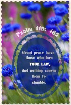 Psalm 119: 165