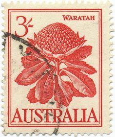1959 Australian Stamp - Blown up stamps wall art?
