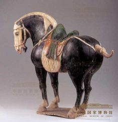 Bello caballo, Dinastía Tang