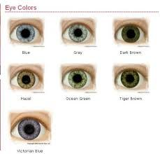 eye color chart - Google Search Eye Color Chart, Different Colors, Iris, Stud Earrings, Google Search, Eye Color Charts, Irise, Irises, Studs