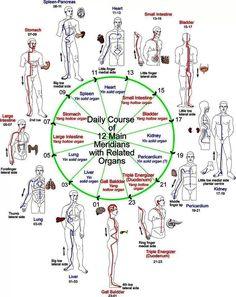 Shiatsu Massage – A Worldwide Popular Acupressure Treatment - Acupuncture Hut Qi Gong, Acupuncture Points, Acupressure Points, Acupressure Therapy, Ayurveda, Reiki, Shiatsu, Eastern Medicine, Traditional Chinese Medicine
