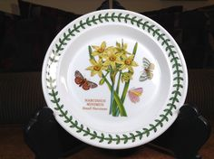"""Portmeirion Botanic Garden Artist Susan Ellis-Williams Small Narcissus Pattern Bread and Butter Plate 7-1/4"""" 1 Only by AlbertsonMiller on Etsy"""