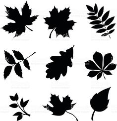 Choose from 60 top Vector stock illustrations from iStock. Find high-quality royalty-free vector images that you won't find anywhere else. Leaf Silhouette, Black Silhouette, Silhouette Vector, Leaf Stencil, Stencils, Free Vector Graphics, Free Vector Art, Mickey Mouse Images, Leaf Outline