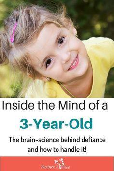 Triple P Parenting Mindful Parenting, Parenting Plan, Natural Parenting, Parenting Classes, Parenting Toddlers, Gentle Parenting, Parenting Hacks, Parenting Styles, Peaceful Parenting