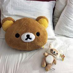 ꒰ 💌 ꒱┊𝚙𝚒𝚗𝚝𝚎𝚛𝚎𝚜𝚝: 𝚘𝚔𝚊𝚢𝚢𝚟𝚒𝚟 Rilakkuma Plushie, Plushies, Animal Room, Honey Bear, Plush Pattern, Etsy Seller, Teddy Bear, Dolls, Creative