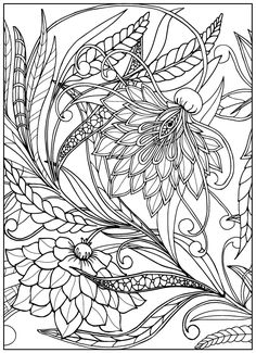 Adult Coloring Books: Amazing Coloring Book for Adults Featuring Beautiful Birds and Henna Inspired Flowers (Adult Coloring Books, Bird Coloring Book, Stress Relieving Patterns) - Kindle edition by Emily Young. Colouring Pics, Flower Coloring Pages, Mandala Coloring Pages, Coloring Book Pages, Printable Coloring Pages, Free Adult Coloring, Desenho Tattoo, Outline Drawings, Vintage Flowers