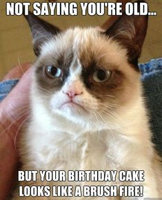 Not saying you're old...but your birthday cake looks like a brush fire! grumpy Cat knows