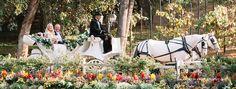 Lake Oak Meadows Wedding Venue at Vitagliano Winery, Temecula, CA