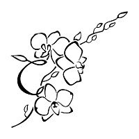 Bildergebnis f r tattoo orchidee tattoos tattoo orchidee tattoo ideen und t towierungen - Orchideen tattoo vorlage ...