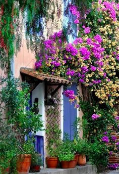 Gorgeous floral entry in Grimaud, Provence, France • photo: Charlottess on Flickr