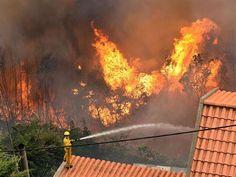 Fas'ın kuzey kısmında 3 gündür devam eden orman yangınında 150 hektar ormanlık alanın zarar gördüğü bildirildi.Orman, S...