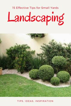 Great Tiny Backyard Landscape Tricks You Can Enjoy