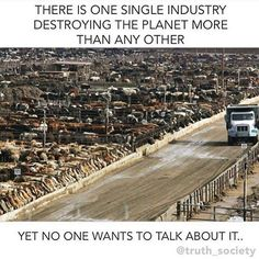 The inconvenient truth about your meat and dairy.