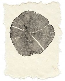 The logs that I cut and split and used for heating my house and studio, or for building a fence, were also perfect for printing. - Bryan Nash Gill