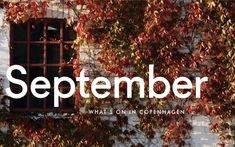 We're heading into fall, but the calendar is as hot as ever. The post What's On in Copenhagen: September 2021 appeared first on Scandinavia Standard.