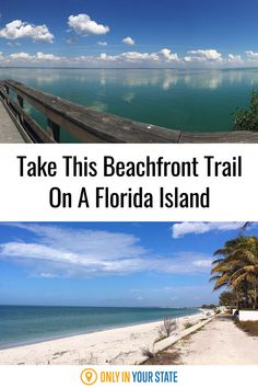Enjoy this beautiful and accessible beachfront hiking and biking trail on a Florida Island. Florida Trips, Places In Florida, Moving To Florida, Florida Travel, Travel Usa, Cool Places To Visit, Places To Travel, Places To Go, Gasparilla Island