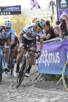 Peter Sagan Tour Of Flanders 2017