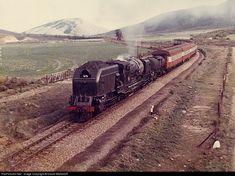 RailPictures.Net Photo: unknown South African Railways 4-8-2+2-8-4 at Oudtshoorn, South Africa by David Werbeloff