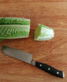 Cut the bottom off of the lettuce stalk. Not too short, but long enough to be planted. When To Plant Lettuce, Growing Lettuce, Growing Veggies, Growing Herbs, Garden Yard Ideas, Garden Beds, Home Vegetable Garden