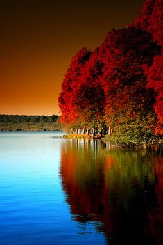 Nature (Mirage d'Automne), via Flickr. Soustons, Aquitaine, France. This scene stills the soul, creating a hush over those who view this masterpiece of nature.