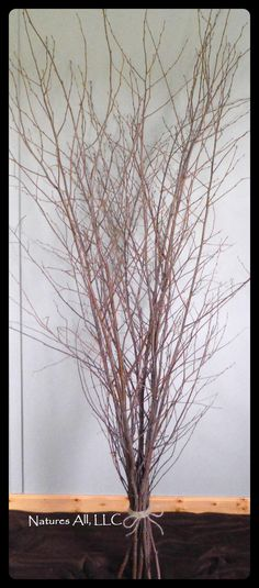 branches tall wedding branches tall decorative branches for home decor