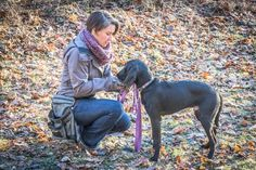 Anyone wanting to create a deeper bond with their dog, you are cordially invited to thisPlanet Dog Storeevent. I will be explaining the foundations of theCanine Core Method. Would love to visit with you and geek out over dogs!  When: February 25th from 12pm-2pm Where: Planet Dog Company Store, 211 Marginal Way in Portland, ME What: Introduction to the Canine Core Method: A Positive Approach to Drive Training Who: Anyone who loves dogs, has dogs, or is thinking about getting a dog! This…