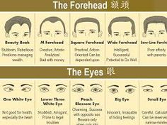 Image result for chinese face reading                              …