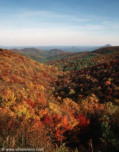 Fall in the North Georgia Mountains.
