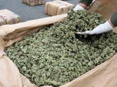 Cannabis Seeds UK Marijuana seeds Marijuana seeds UK http://buymarijuana.co.uk/