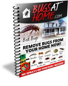 Get Rid of those pesky bugs in your home with Bugs at Home ebook. Remove bugs from your home now. Click http://howtogetridofbedbugsnaturallynow.com/ to know more about it.