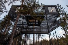 7th Room of Sweden's Treehotel #baxtton #architecture #design #outdoor #Treehotel #Cabin #Mirrorcube #Dragonfly #UFO #BlueCone #BirdsNest #7thRoom #hotel #Sweden