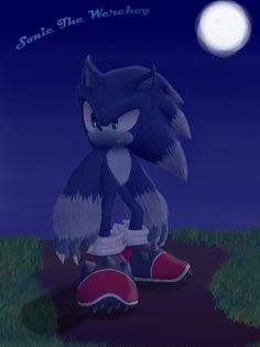 Sonic the Werehog! (Sonic Unleashed)