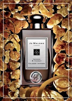 Jo Malone Incense & Cedrat Intense Cologne (2015): Great Bones Don't Lie {Perfume Review & Musings} {New Fragrance} http://www.mimifroufrou.com/scentedsalamander/2015/02/jo_malone_incense_cedrat_review.html