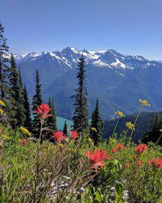 #NorthCascades National Park   Washington