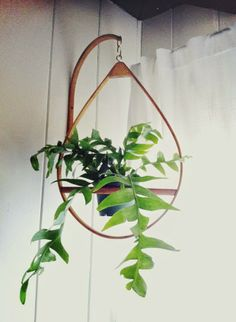 Wooden hanging plant holder
