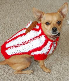 Baseball Dog Shirt - Small Dog Sweater