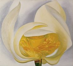 White Lotus by Georgia O'Keeffe, 1939. Oil on canvas, 20 x 22"