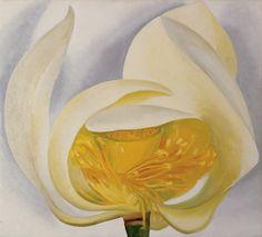 "White Lotus by Georgia O'Keeffe, 1939. Oil on canvas, 20 x 22""   Muscatine Art Center, Iowa. ~via Georgia O'Keeffe Museum"