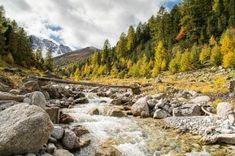 Herbstliches Gepränge am Mot Tavrü - In der Natur unterwegs Mountains, Nature, Travel, Outdoor, Communities Unit, National Forest, Alps, Hiking, Outdoors