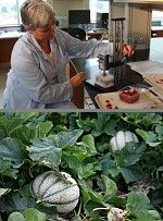 NC researchers seek organic alternative to chlorine: Dr. Penelope Perkins-Veazie's team at the Plants for Human Health Institute is investigating plant-based compounds as produce washes, for food safety & longer shelf life, with acceptability for organic food labeling. Read more | http://www.thegrower.com/news/North-Carolina-researchers-seek-organic-alternative-to-chlorine-208824781.html