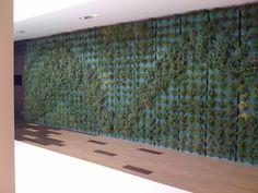 YELLOW LAGOS BEACH HOTEL. Otra instalación de Minigarden Vertical en hotel.