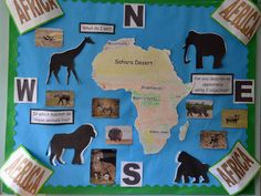 We are a specialist provider of school websites and web design for primary, secondary and nursery schools. Classroom Wall Displays, Class Displays, School Displays, Classroom Walls, School Classroom, African Theme, African Safari, African Art, Rumble In The Jungle